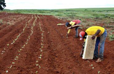 MST denuncia extração ilegal de areia em área de assentamento no RJ